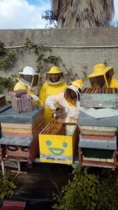 Corso apicoltura novembre 11