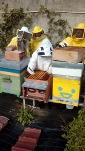 Corso apicoltura novembre 14
