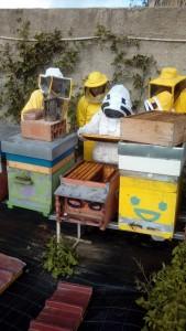 Corso apicoltura novembre 15