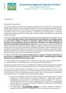 comunicato n 12_Pagina_1
